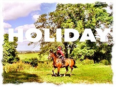 Horse Riding Vacation Holiday Ireland